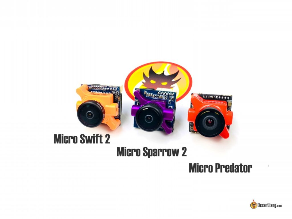 Sparrow 2 size comparison to predator and swift